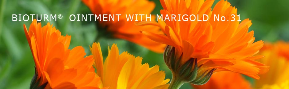 Bioturm Natural cosmetics Ointment with marigold No.31